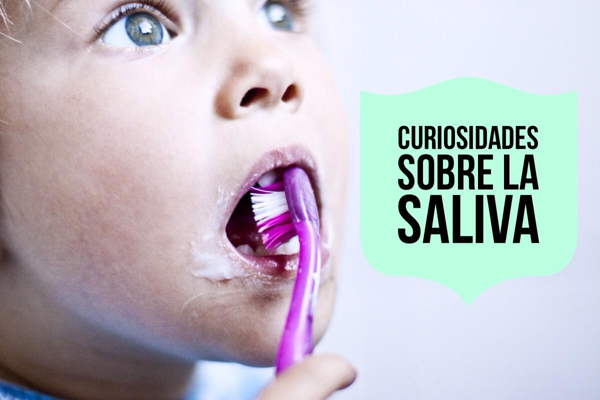 ¿Qué ocurriría si no tuviéramos saliva?